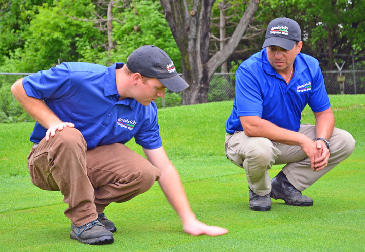 Afscme members lend ramsey county golf courses a steady for Gardner golf course