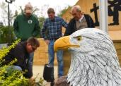 web.IBEW-faribault-eagle