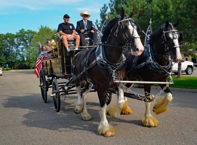 teamsterhorses1